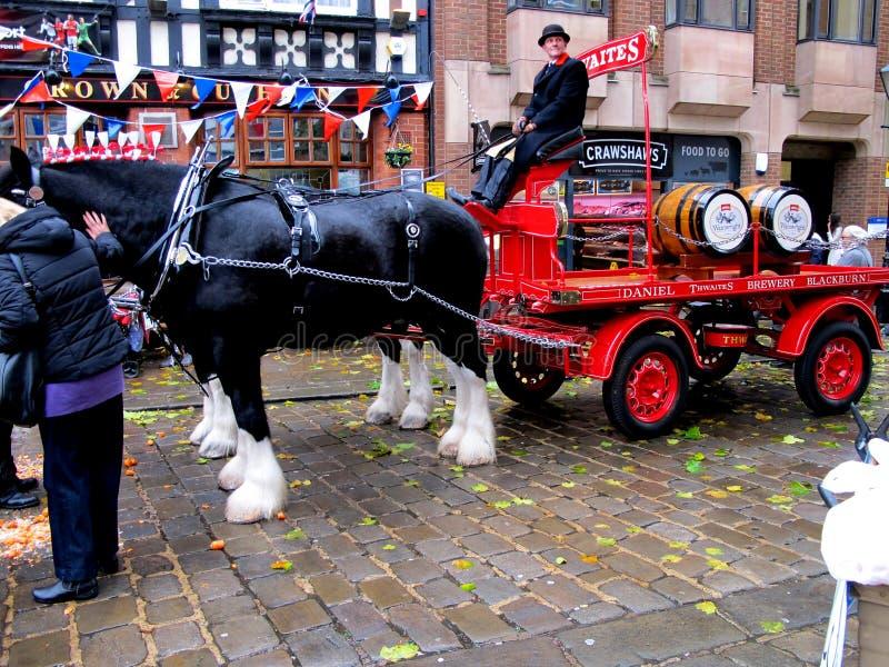 Cavallo e dray della fabbrica di birra fotografia stock