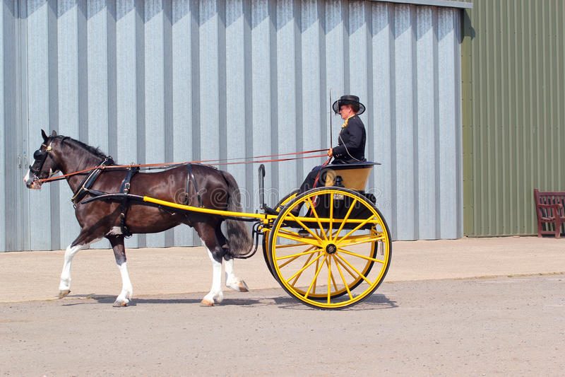 Cavallo e evento o cavallino e trappola. immagini stock