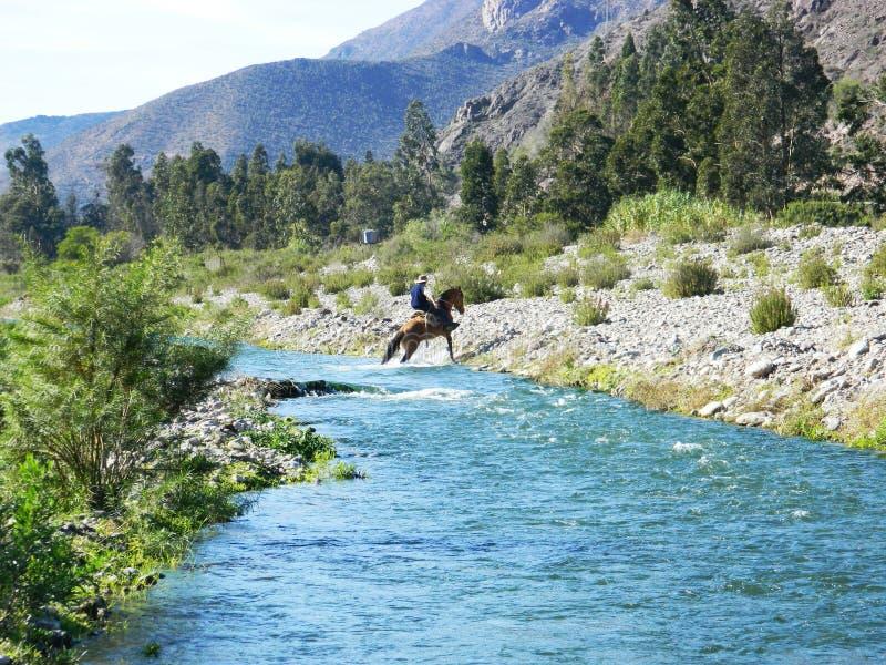 Cavallo il mio viaggio immagini stock libere da diritti