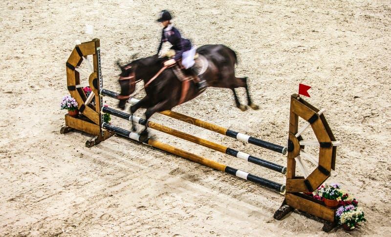 Cavallo nero con il cavaliere che salta sopra l'ostacolo Concorrenza di guida immagine stock libera da diritti