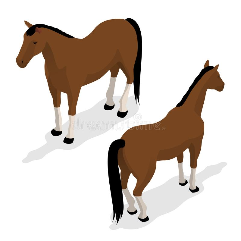 Cavallo occidentale con la sella e la briglia Illustrazione isometrica di vettore illustrazione di stock
