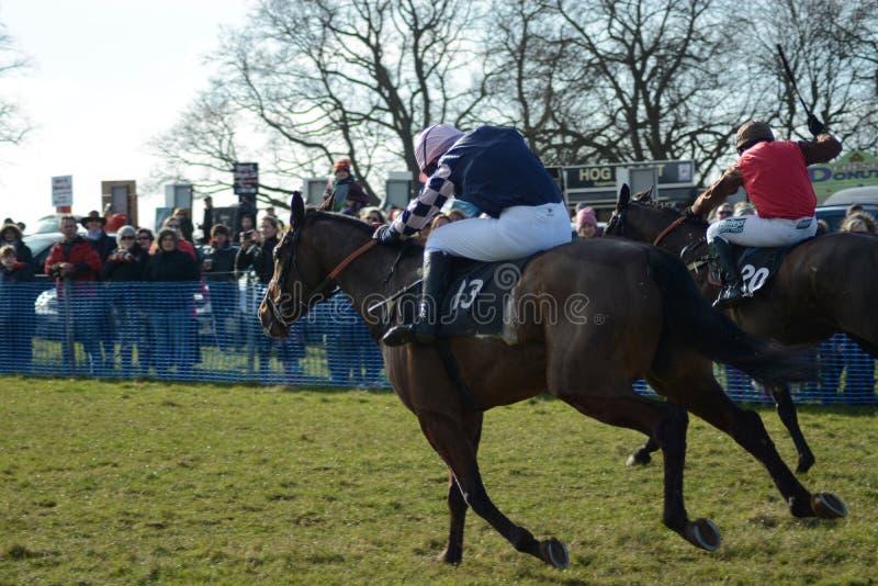 Cavallo Racing Lotta all'arrivo immagini stock libere da diritti