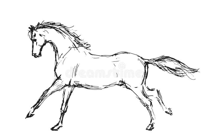 Cavallo schizzato immagini stock libere da diritti