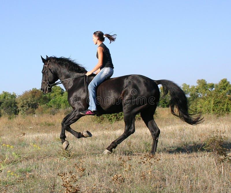 Cavallo teenager e veloce immagine stock libera da diritti