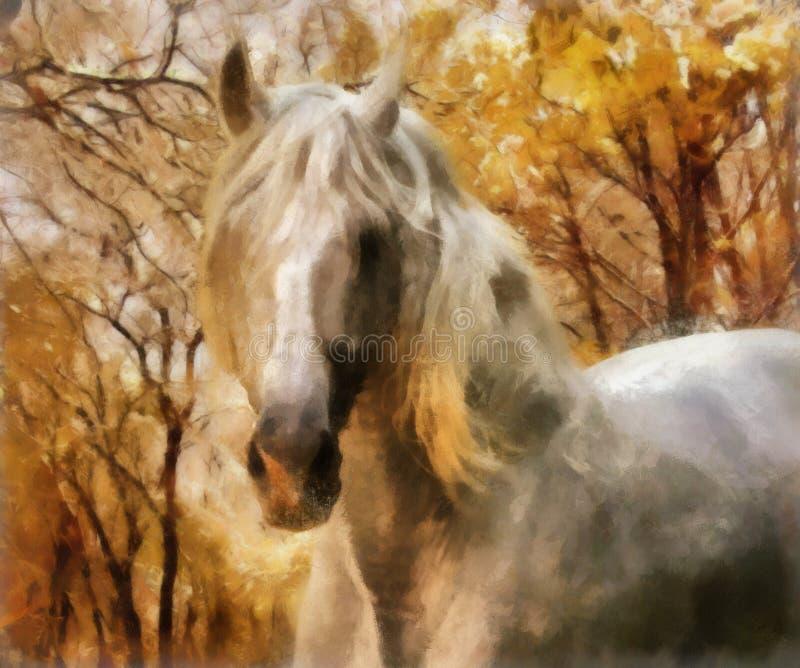 Cavalo andaluz ilustração do vetor