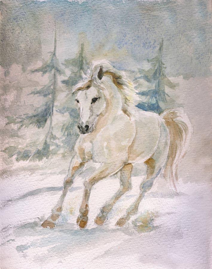 Cavalo branco ilustração stock