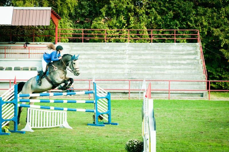 Cavalo branco bonito e salto do passeio do jóquei da jovem mulher sobre o gancho no esporte equestre foto de stock royalty free