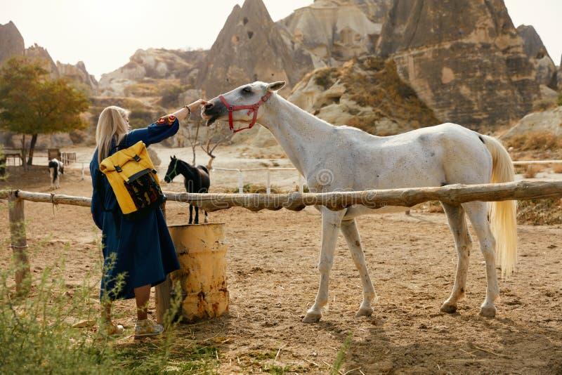 Cavalo branco das trocas de carícias da mulher na exploração agrícola, tocando em seu nariz imagem de stock royalty free