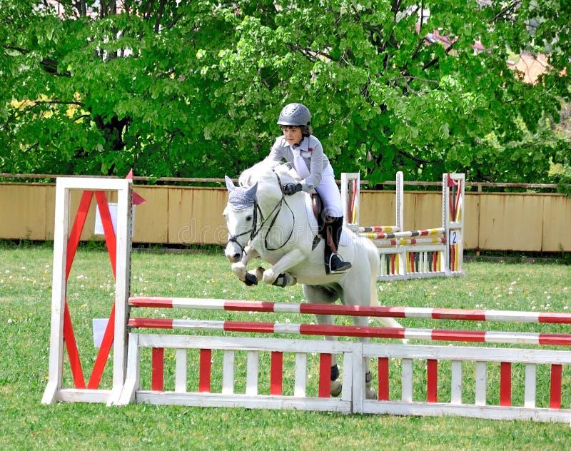 Cavalo branco de montada do menino novo imagens de stock royalty free
