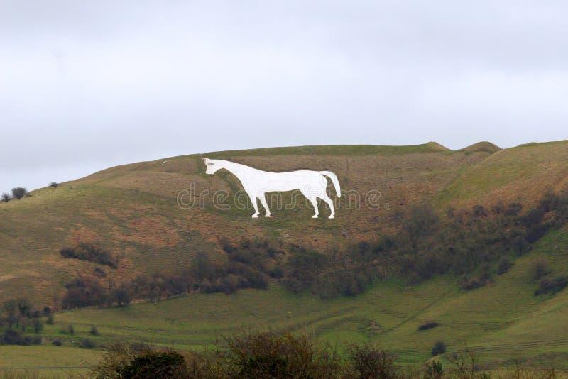 Cavalo branco de Westbury em Wiltshire Inglaterra fotos de stock