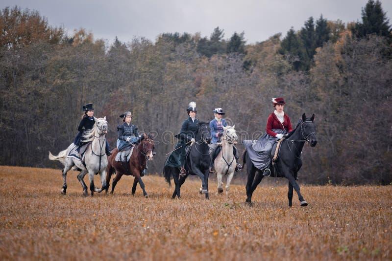 Cavalo-caça com as senhoras no hábito de equitação fotografia de stock