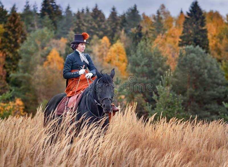 Cavalo-caça com cavaleiros no hábito de equitação imagem de stock royalty free