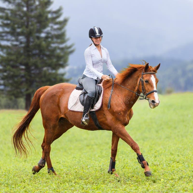 Cavalo da azeda da equitação da jovem mulher no prado da montanha imagens de stock royalty free