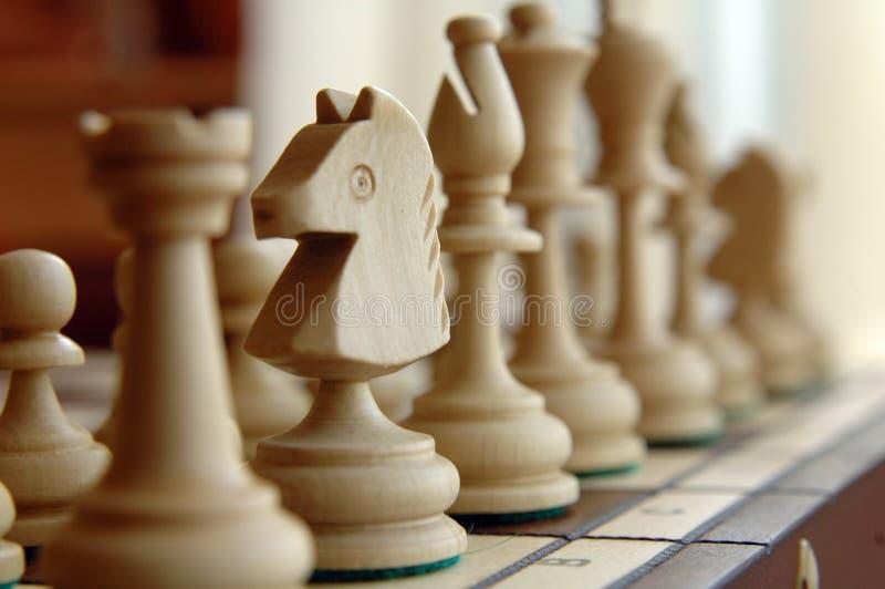 Cavalo da xadrez imagens de stock