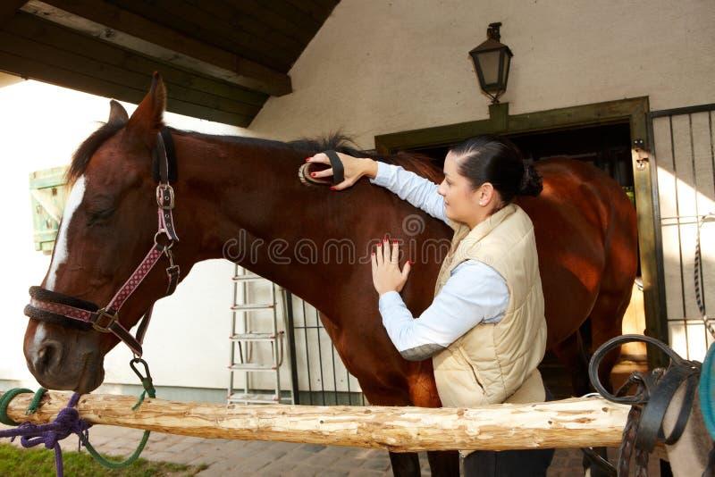 Cavalo de acariciamento da jovem mulher fotografia de stock