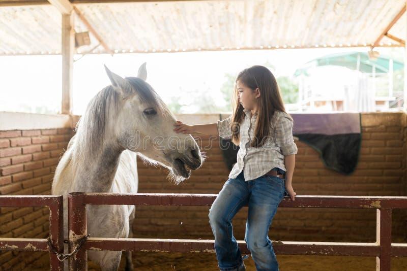 Cavalo de acariciamento do rancheiro pequeno no estábulo fotografia de stock