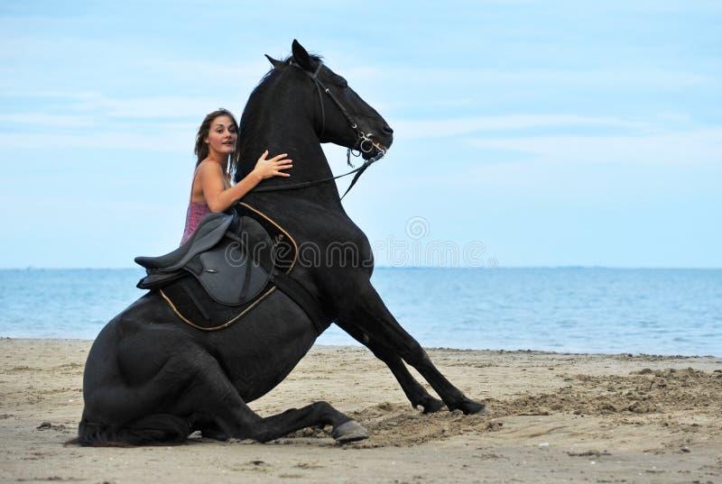 Cavalo de assento na praia imagens de stock