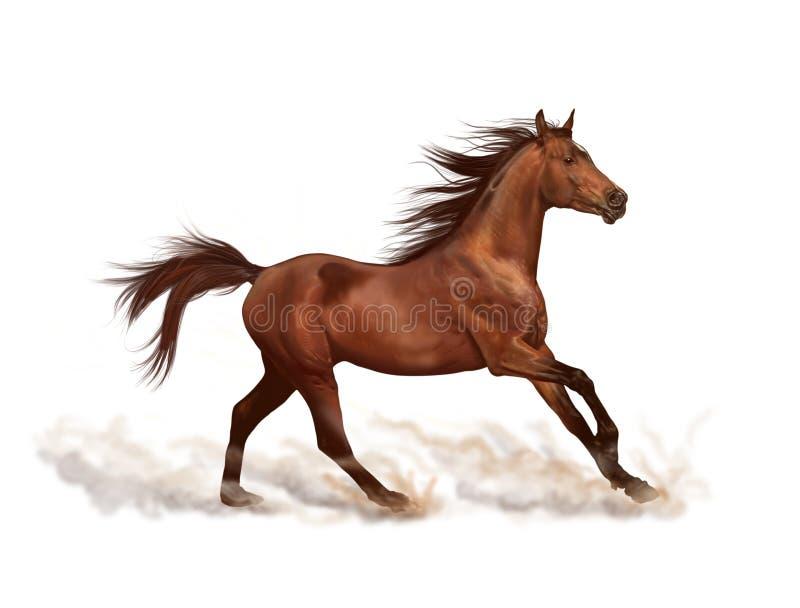 Cavalo de Brown que corre no fundo branco ilustração do vetor