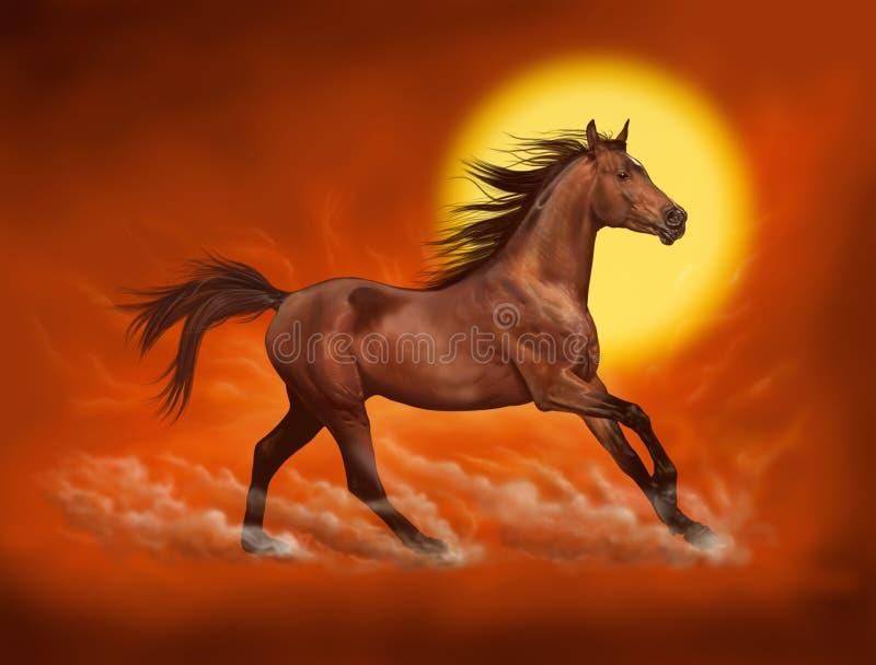 Cavalo de Brown que corre o fundo vermelho do céu ilustração royalty free