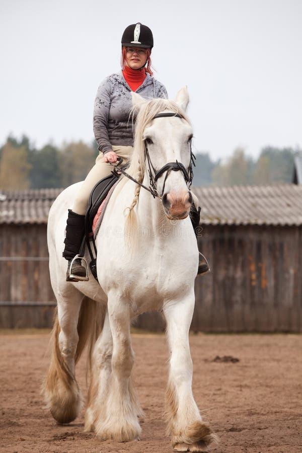 Cavalo de condado da equitação da mulher nova mim fotografia de stock royalty free