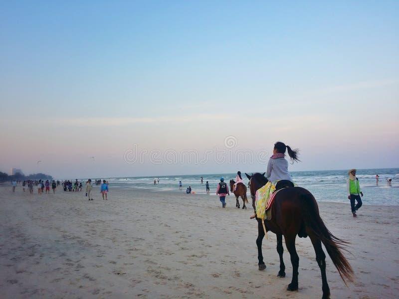 Cavalo de equitação da princesa na praia imagens de stock royalty free