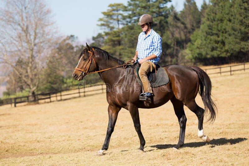 Cavalo de equitação do homem imagens de stock