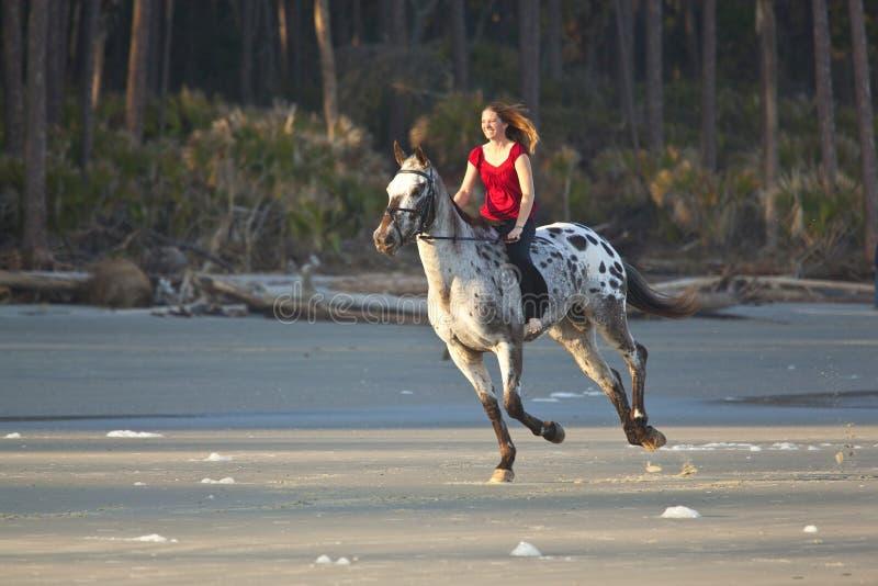 Cavalo de equita??o da mulher na praia foto de stock