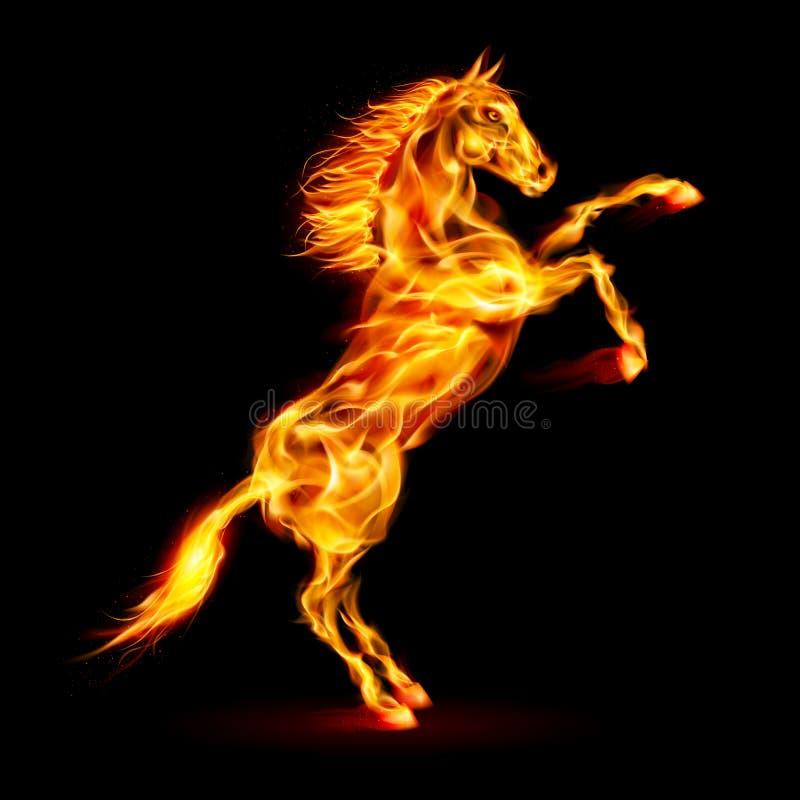 Cavalo do fogo que eleva acima. ilustração do vetor