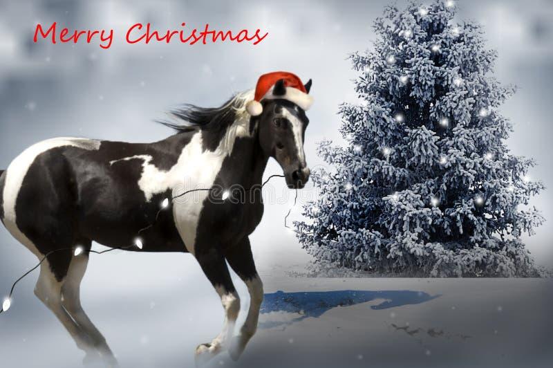 Cavalo do Natal imagens de stock