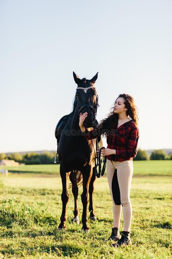 Cavalo do preto das trocas de carícias da jovem mulher imagem de stock royalty free