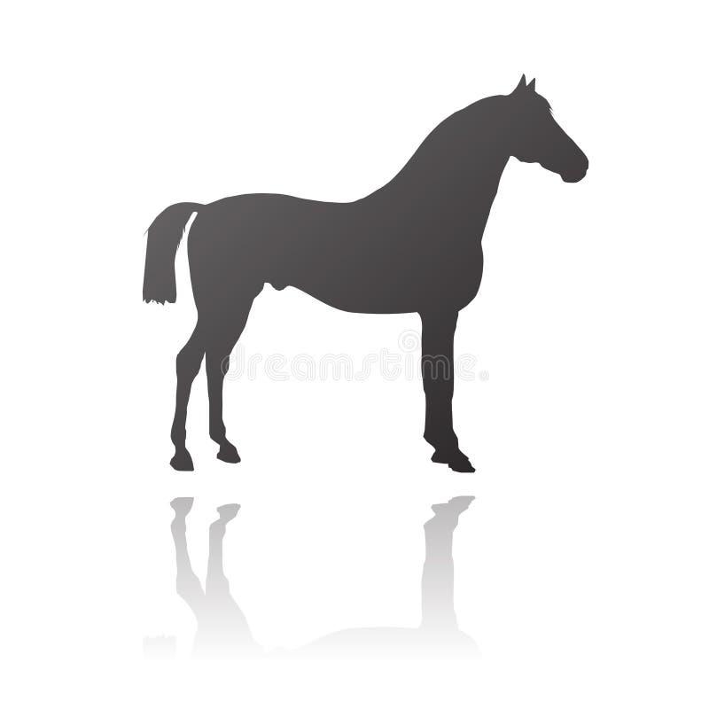 Cavalo do puro-sangue do vetor ilustração royalty free