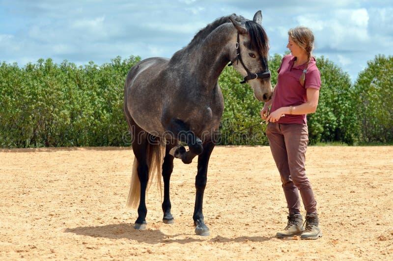 Cavalo do treinamento da menina imagens de stock royalty free