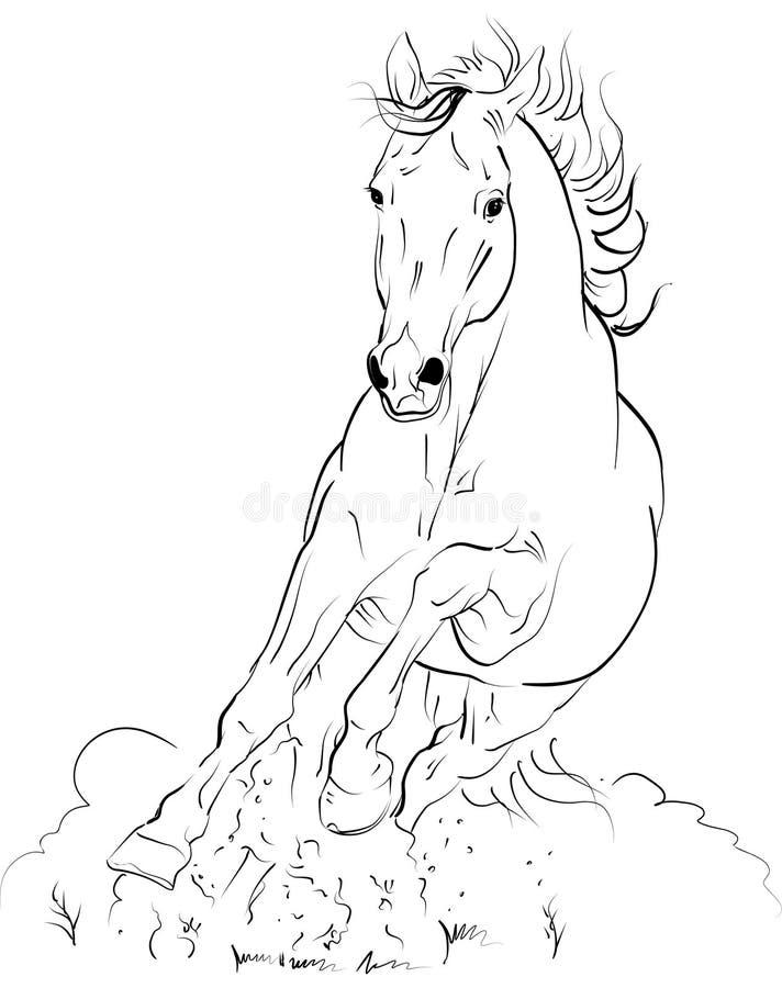 Cavalo do vetor ilustração stock