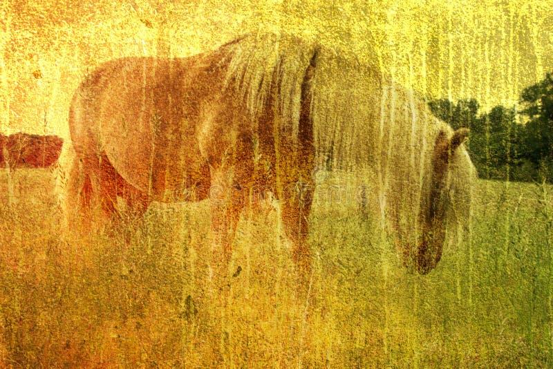 Cavalo do vintage ilustração stock
