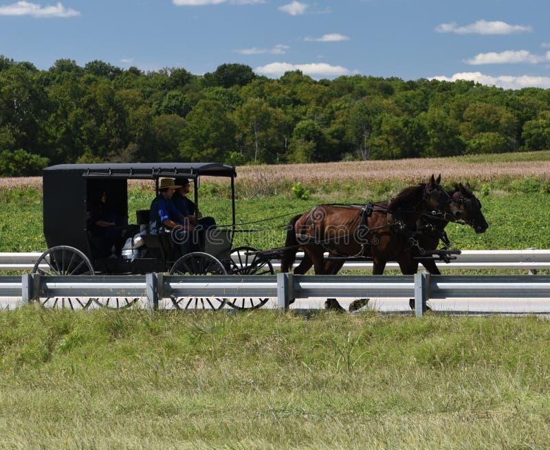 Cavalo e buggy de Amish fotos de stock