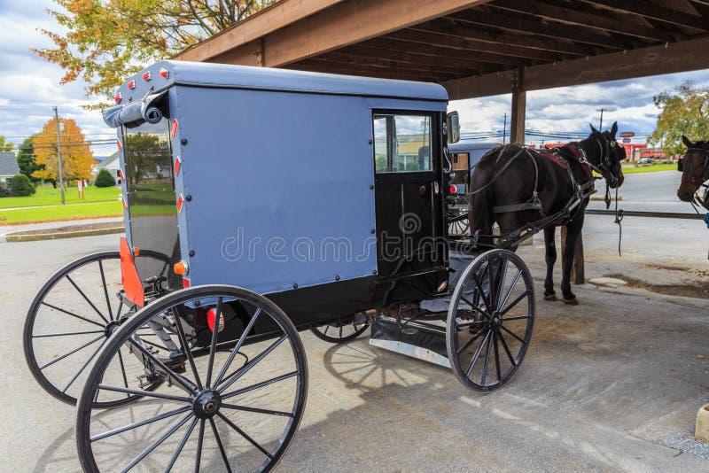 Cavalo e carrinho do Condado de Lancaster Amish fotografia de stock