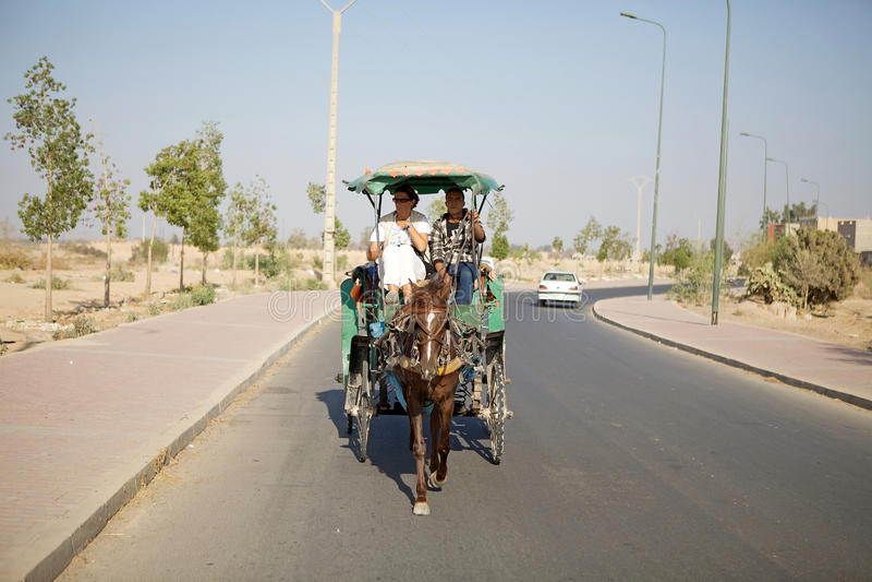 Cavalo e carro fotos de stock royalty free