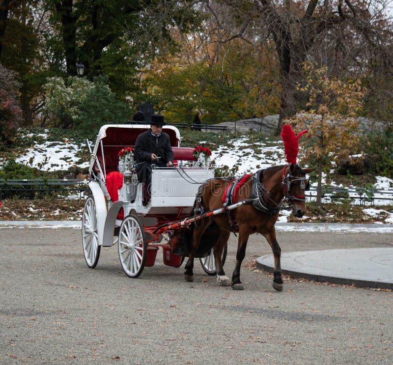 Cavalo e carro na neve foto de stock