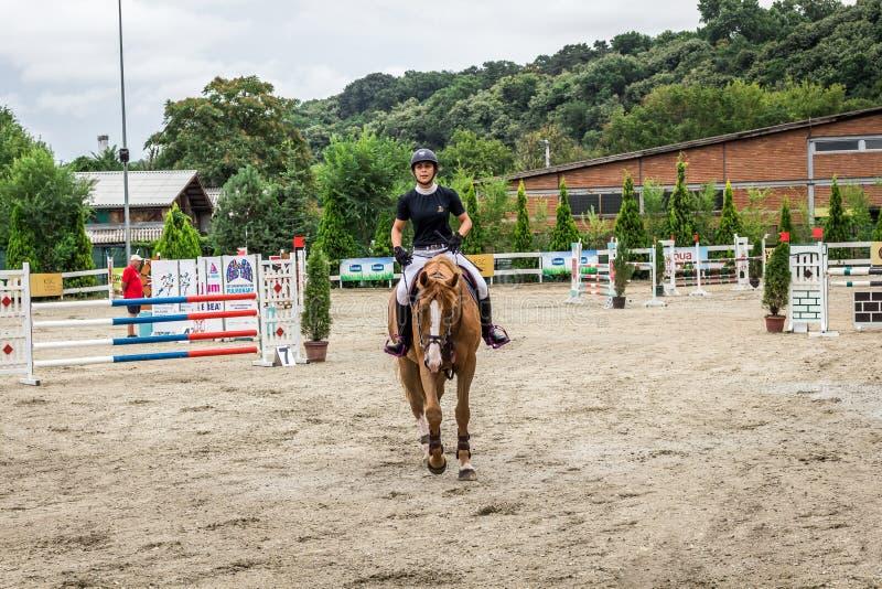 Cavalo e jokey bonitos na ação na trilha de corrida de cavalos com equipamento do obstáculo no hipódromo fotografia de stock royalty free