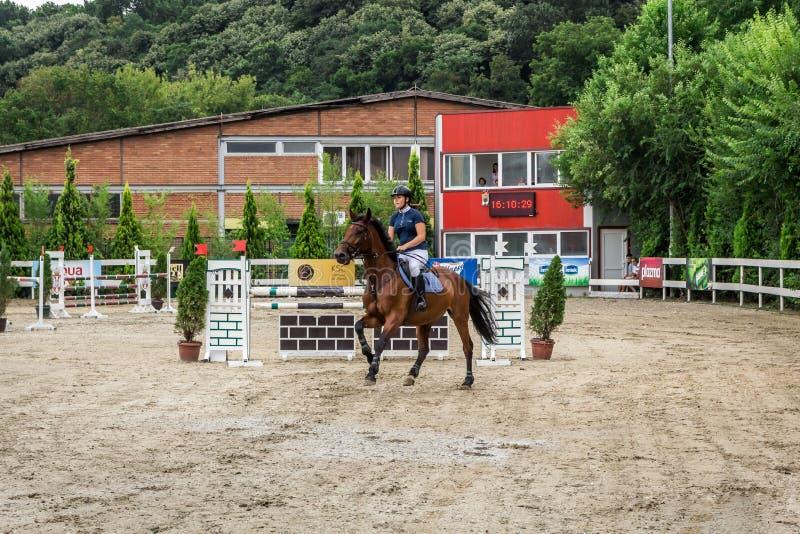 Cavalo e jokey bonitos na ação na trilha de corrida de cavalos com equipamento do obstáculo no hipódromo fotografia de stock