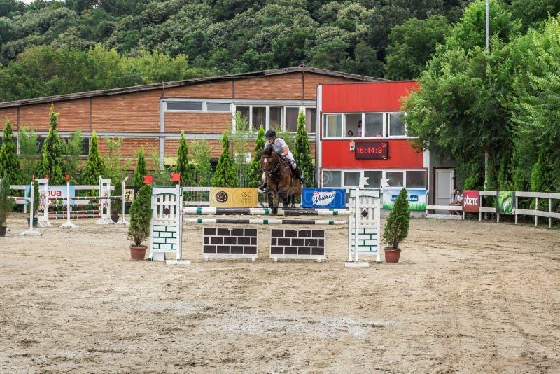 Cavalo e jokey bonitos na ação na trilha de corrida de cavalos com equipamento do obstáculo no hipódromo imagens de stock