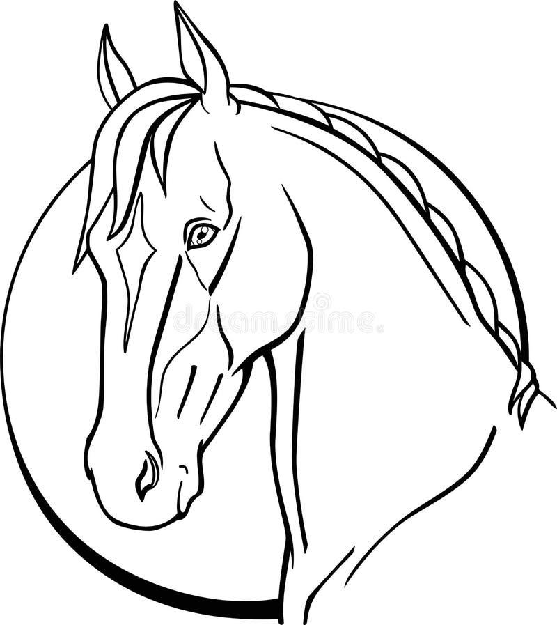 Cavalo Cabeca De Cavalo Retrato Imagem Linear Para Colorir