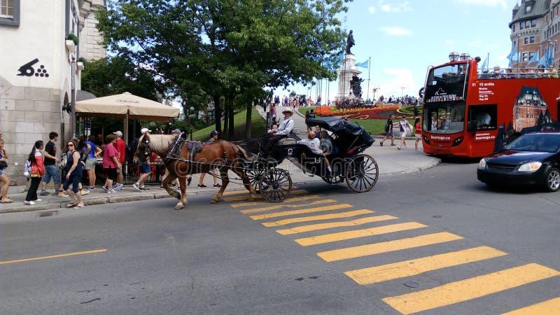 Cavalo e transporte imagem de stock royalty free