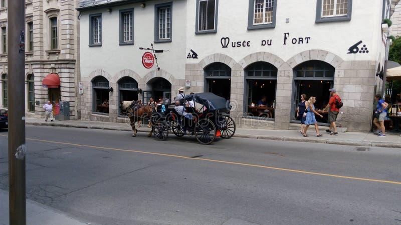 Cavalo e transporte foto de stock royalty free