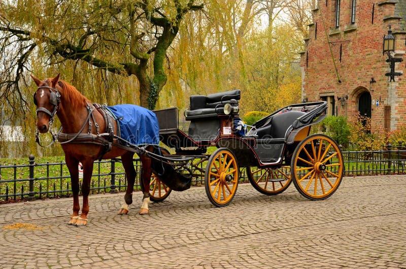 Cavalo e transporte imaculados Bruges Bélgica imagens de stock