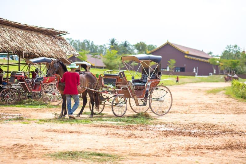 Cavalo e um transporte velho bonito na explora??o agr?cola velha imagens de stock