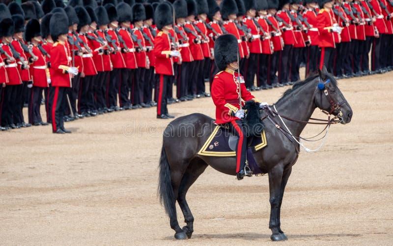 Cavalo militar com o cavaleiro que participa no agrupamento a cerim?nia militar em protetores de cavalo, Londres Reino Unido da c imagem de stock royalty free