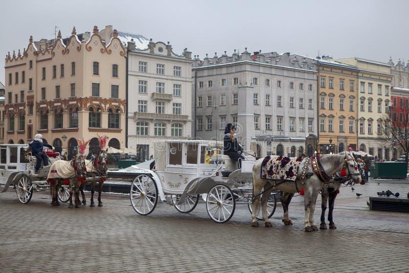 Cavalo na frente da catedral de St Mary em Krakow, Polônia fotografia de stock royalty free