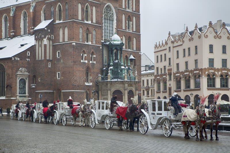 Cavalo na frente da catedral de St Mary em Krakow, Polônia imagens de stock royalty free