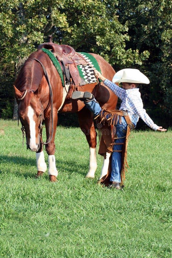 Cavalo novo da montagem do cowboy fotografia de stock royalty free